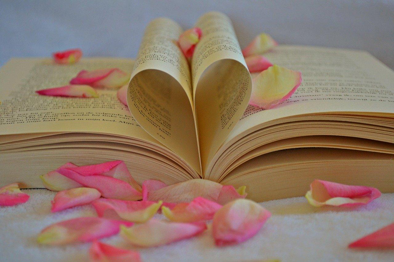book-1169437_1280 (1)