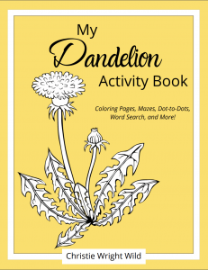 dandy activity book cover
